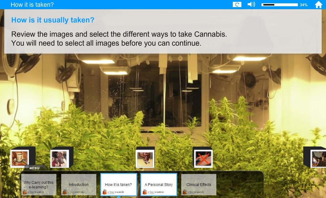 Cannabis Awareness for Managers e-Learning